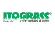 Itograss